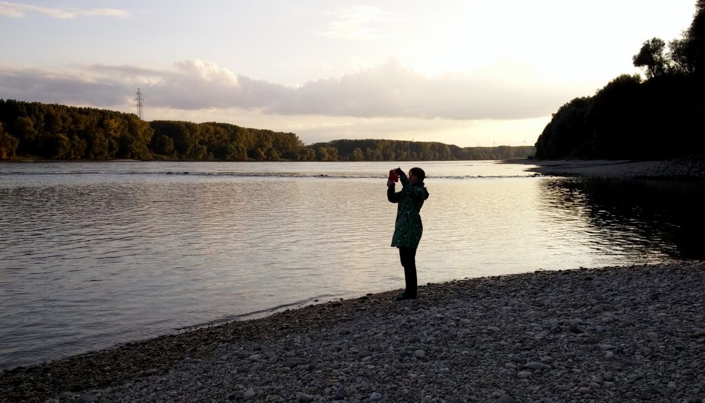Capturing the moment in the national park Donau-auen